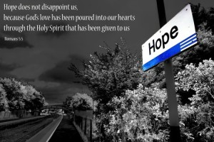 Hope does not dissapoint